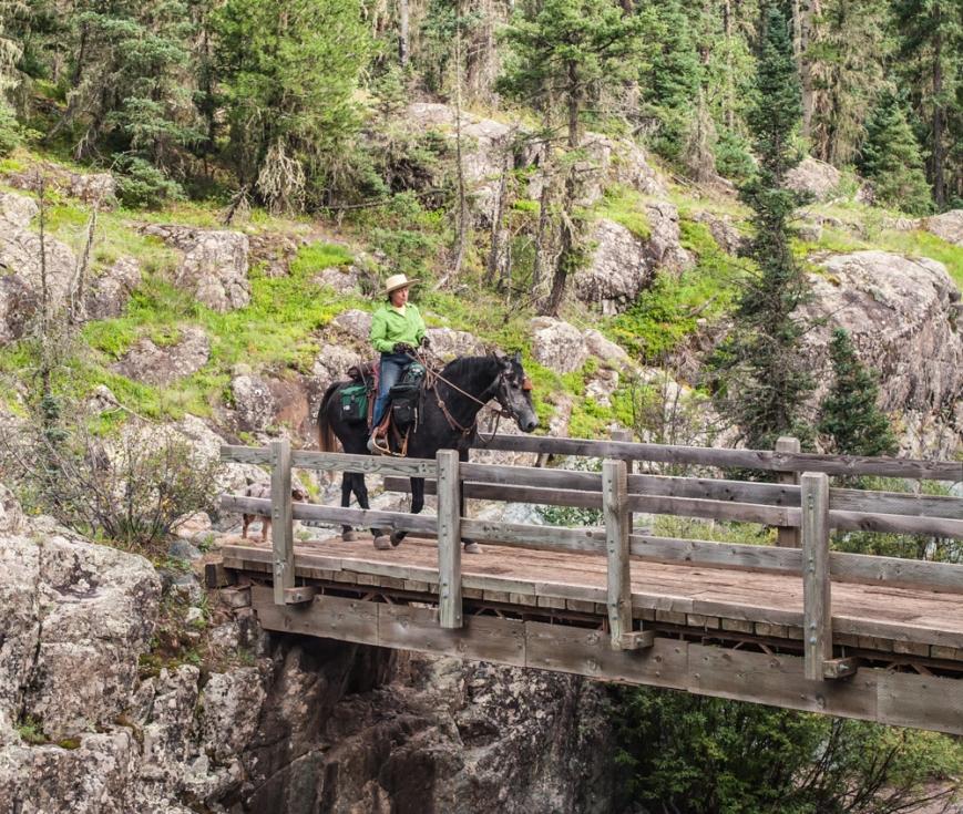 Bridge_Crossing